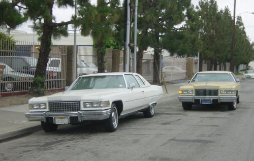 30. LA twins