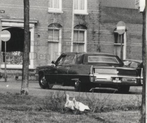 De la reyweg 1970 limo